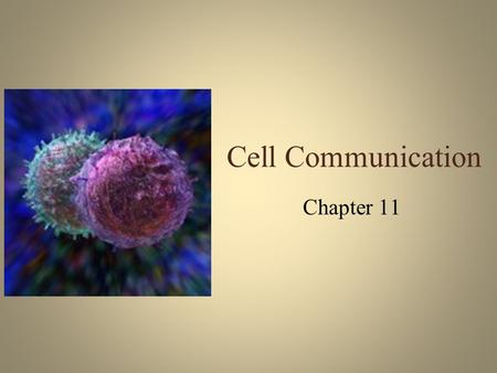 Cell Communication Chapter 11. Multicellular Organisms Behave as a community – Cells talk –Neighbors carry on private conversations –Messages are sent.