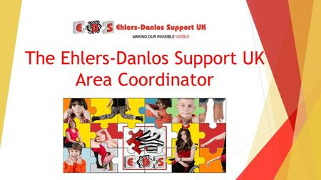The Ehlers-Danlos Support UK Area Coordinator. What will we be covering? What is Ehlers-Danlos syndrome How does this affect people day to day? Awareness!