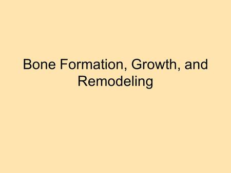 Bone Formation, Growth, and Remodeling. Ossification Ossification – Process of bone formation Steps in Ossification 1) Hyaline cartilage is used to form.