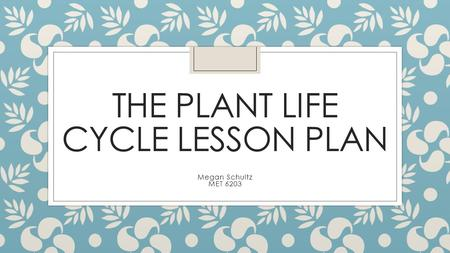 THE PLANT LIFE CYCLE LESSON PLAN Megan Schultz MET 6203.