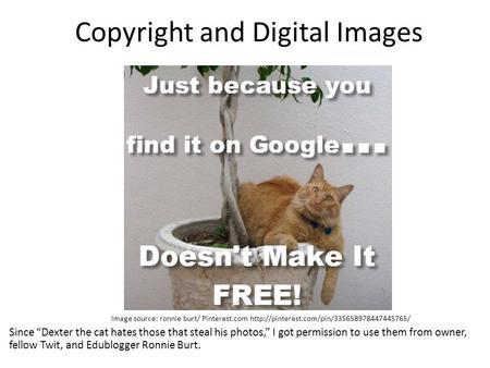 "Copyright and Digital Images Image source: ronnie burt/ Pinterest.com  Since ""Dexter the cat hates those that."