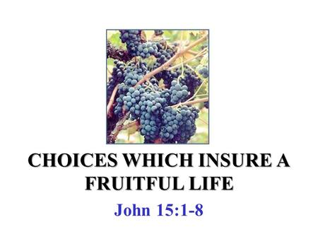 CHOICES WHICH INSURE A FRUITFUL LIFE John 15:1-8.
