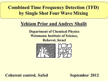 Combined Time Frequency Detection (TFD) by Single Shot Four Wave Mixing Yehiam Prior and Andrey Shalit Department of Chemical Physics Weizmann Institute.