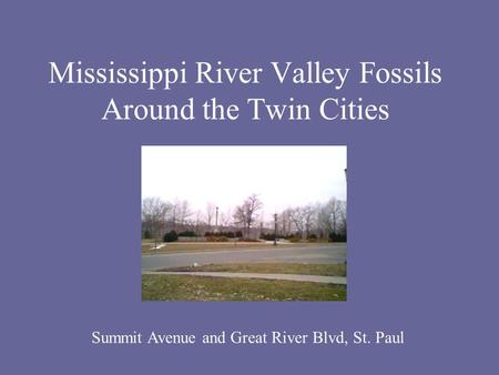 Mississippi River Valley Fossils Around the Twin Cities Summit Avenue and Great River Blvd, St. Paul.