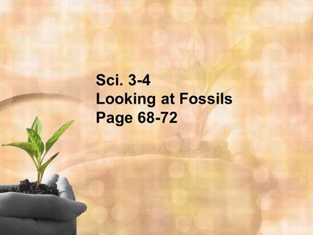 Sci. 3-4 Looking at Fossils Page 68-72. A. Fossil- any naturally preserved evidence of life.