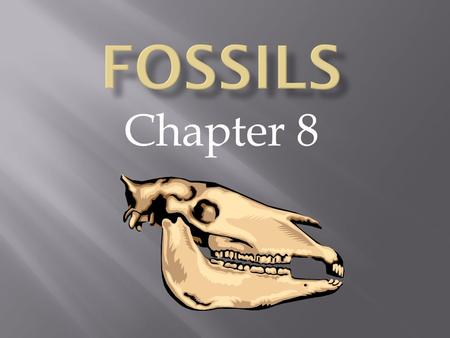 Chapter 8. Fossil - the preserved remains or traces of a living thing. Mold - the hollow space that is left. Cast - forms when dissolved minerals fill.