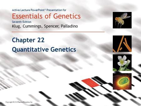 Active Lecture PowerPoint ® Presentation for Essentials of Genetics Seventh Edition Klug, Cummings, Spencer, Palladino Copyright © 2010 Pearson Education,