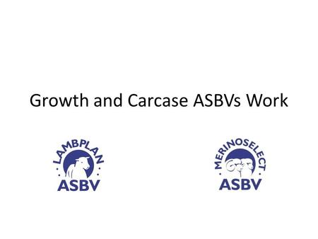 Growth and Carcase ASBVs Work. Sheep CRC - Information Nucleus Flock Background Sheep CRC initiated large scale progeny test of young industry sires -