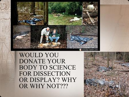 WOULD YOU DONATE YOUR BODY TO SCIENCE FOR DISSECTION OR DISPLAY? WHY OR WHY NOT???