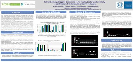 Materials & Methods Objective Extraintestinal pathogenic Escherichia coli in healthy broiler chicken in Italy: a combination of virulence with antibiotic.