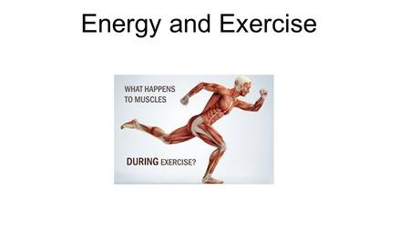 Energy and Exercise. Vocabulary terms: Aerobic – requiring the presence of oxygen Anaerobic – without oxygen Fast-twitch fibers – fibers that are large.