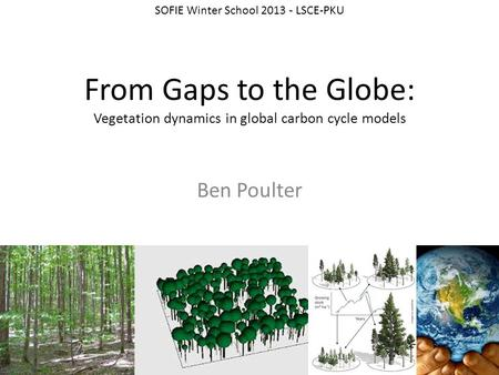 From Gaps to the Globe: Vegetation dynamics in global carbon cycle models Ben Poulter SOFIE Winter School 2013 - LSCE-PKU.