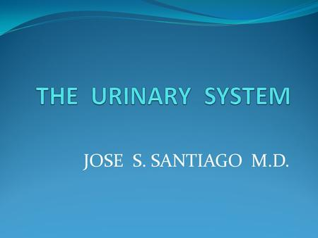 JOSE S. SANTIAGO M.D.. Figure 18.1Urinary Sysstem URINARY SYSTEM - Excretory System - composed of organs that excrete water and waste excrete water and.
