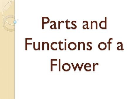 Parts and Functions of a Flower. Male Parts and Functions Stamen – is the male reproductive part of a flower. Anther – produces pollen grains which develop.