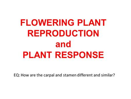 FLOWERING PLANT REPRODUCTION and PLANT RESPONSE EQ: How are the carpal and stamen different and similar?