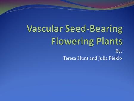 By: Teresa Hunt and Julia Pieklo. What Are Vascular Seed-Bearing Flowering Plants? Vascular seed-bearing flowering plants are plants that have certain.