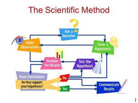 The Scientific Method 1. Observation Observing – Using your senses to study objects.