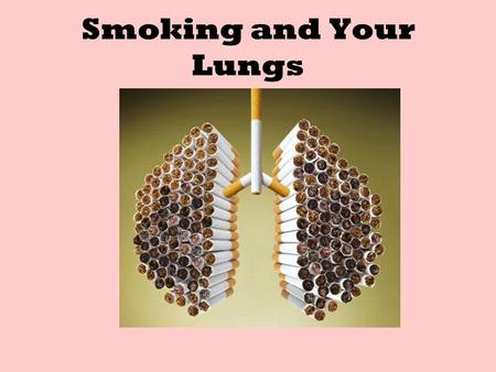 Smoking and Your Lungs. Human Respiratory System The human respiratory system consists of nasal cavity, pharynx, larynx, trachea, bronchi, bronchioles,