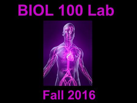BIOL 100 Lab Fall 2016. Michelle Smith   Instructor: Contact Information: