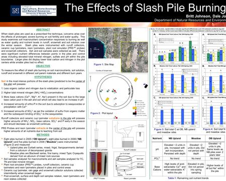 The Effects of Slash Pile Burning Britt Johnson, Dale Jo Department of Natural Resources and Environm ABSTRACT When slash piles are used as a prescribed.