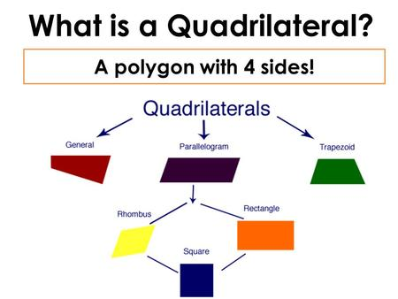 What is a Quadrilateral? A polygon with 4 sides!.