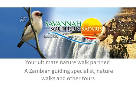 Your ultimate nature walk partner! A Zambian guiding specialist, nature walks and other tours.