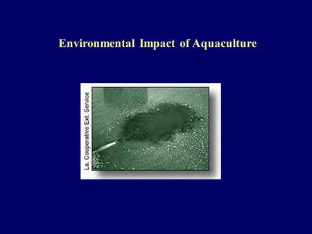 Environmental Impact of Aquaculture. Aquaculture Production World production doubled since 1984 - 20,900,00 mt of fish and shellfish in 1995 U.S. production.