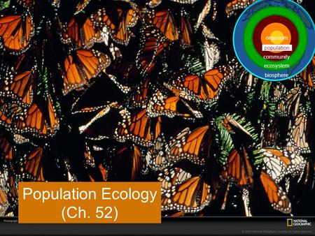 Population Ecology (Ch. 52) population ecosystem community biosphere organism.