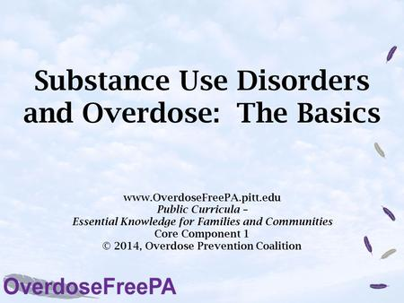 Substance Use Disorders and Overdose: The Basics www.OverdoseFreePA.pitt.edu Public Curricula – Essential Knowledge for Families and Communities Core Component.