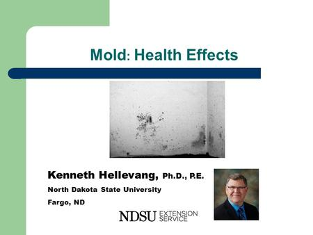 Mold : Health Effects Kenneth Hellevang, Ph.D., P.E. North Dakota State University Fargo, ND.