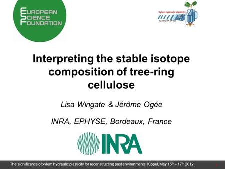 Interpreting the stable isotope composition of tree-ring cellulose