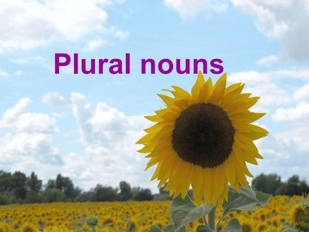 Plural nouns. A plural noun is a word that: Indicates that there is more than one person, animal, thing, or idea. When you talk about more than one of.