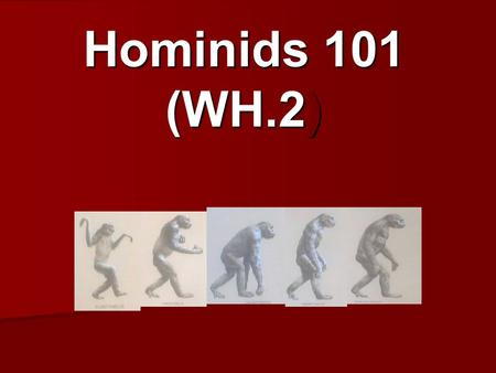 Hominids 101 (WH.2). What does Prehistory mean? Time before humans wrote down or recorded records of past events!