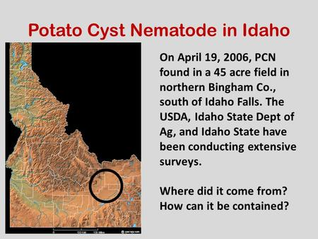 On April 19, 2006, PCN found in a 45 acre field in northern Bingham Co., south of Idaho Falls. The USDA, Idaho State Dept of Ag, and Idaho State have been.