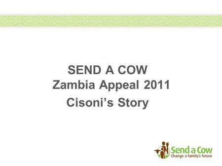 SEND A COW Zambia Appeal 2011 Cisoni's Story. Zambia Appeal – Cisoni Mwale 43 year Cisoni Mwale lives with his wife and six children in Chiparamba area.