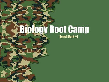 Biology Boot Camp Bench Mark #1. WARM UP ORGANIC COMPOUNDS & ENZYMES With your table, write down as many things as you can remember about organic compounds.