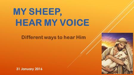 MY SHEEP, HEAR MY VOICE Different ways to hear Him 31 January 2016.