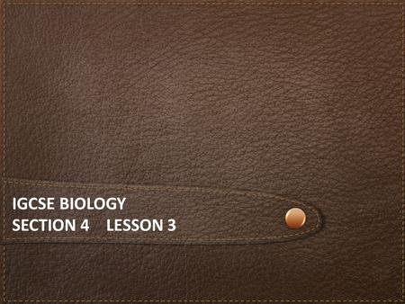 IGCSE BIOLOGY SECTION 4 LESSON 3. Content Section 4 Ecology and the Environment a)The organism in the environment b)Feeding relationships c)Cycles within.