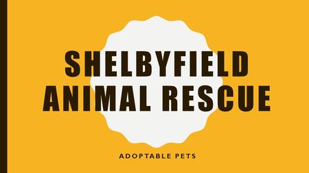 SHELBYFIELD ANIMAL RESCUE ADOPTABLE PETS. OUR MISSION …to rescue, rehabilitate, and re- home stray or unwanted pets. The volunteers of Shelbyfield Animal.