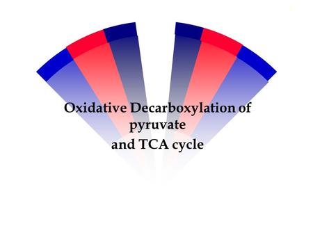 Oxidative Decarboxylation of pyruvate and TCA cycle 1.