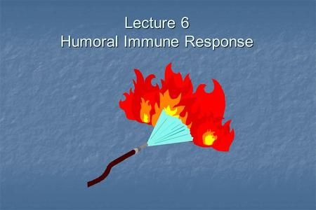 Lecture 6 Humoral Immune Response. The Antibody Response.