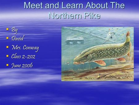 Meet and Learn About The Northern Pike  By  David  Mrs. Conway  Class 2-202  June 2006.