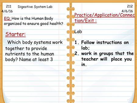 Starter: Which body systems work together to provide nutrients to the human body? Name at least 3 211 212 Digestive System Lab Practice/Application/Connec.
