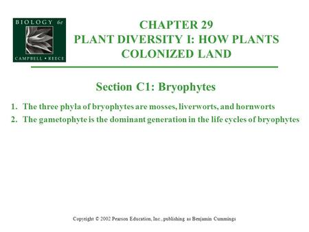 CHAPTER 29 PLANT DIVERSITY I: HOW PLANTS COLONIZED LAND Copyright © 2002 Pearson Education, Inc., publishing as Benjamin Cummings Section C1: Bryophytes.