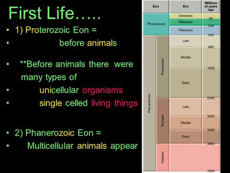 First Life….. 1) Proterozoic Eon = before animals **Before animals there were many types of unicellular organisms single celled living things 2) Phanerozoic.