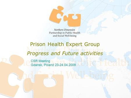 CSR Meeting Gdansk, Poland 23-24.04.2009 Prison Health Expert Group Progress and Future activities.