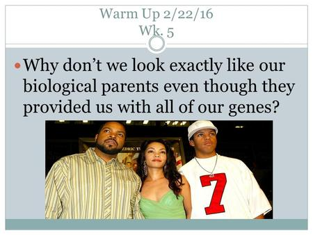 Warm Up 2/22/16 Wk. 5 Why don't we look exactly like our biological parents even though they provided us with all of our genes?