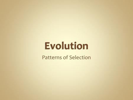 Patterns of Selection. Last day we looked at how mutations provide a continuous supply of new genetic variations, which can be inherited and expressed.