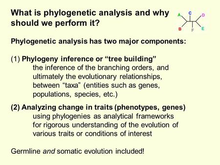 "What is phylogenetic analysis and why should we perform it? Phylogenetic analysis has two major components: (1) Phylogeny inference or ""tree building"""