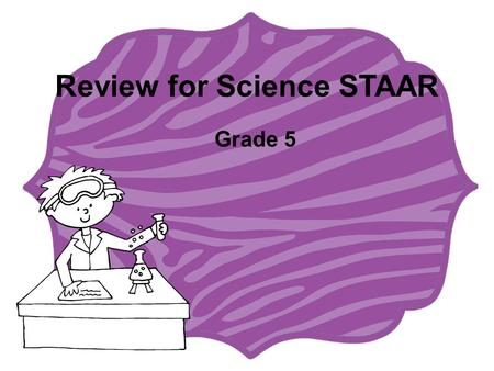Review for Science STAAR Grade 5. Odd One Out Have your partner read you the answer choices on the card. Choose the answer that does not belong. Justify.